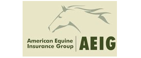 American Equine Insurance Group - ValueMomentum's Valued Customers for iFoundry Rating Engine