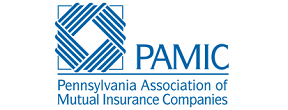 ValueMomentum is a Member of Pennysylvania Association of Mutual Insurance Companies (PAMIC)