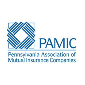 ValueMomentum is a Member of Pennysylvania Association of Mutual Insurance Companies (PAMIC)